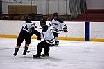 Hockey 20081005 (15) (2917389327).jpg