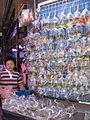 Hong Kong Goldfish Market IMG 5490.JPG