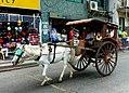 Horse drawn transport Laoag. Philippines. (16219841632).jpg