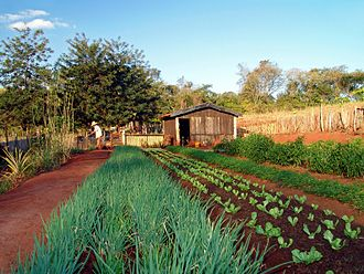 Agrometeorology - Horticulture is strongly influenced by climatic variations, however small.