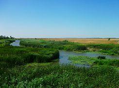 Hortob%C3%A1gy River, Hungary 01