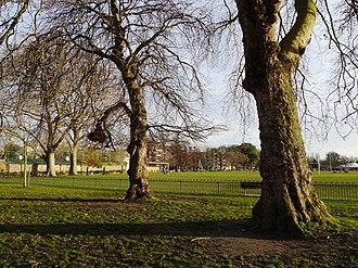 Hurlingham Park - Hurlingham Park