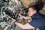 ISS-57 Serena Auñón-Chancellor works in the Destiny lab (3).jpg