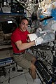 ISS 63 Chris Cassidy prepares to stow biological samples.jpg