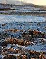 Ice crystals in frozen mud-Hverir.jpg