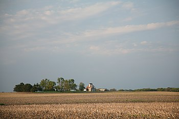 Illinois farm.jpg