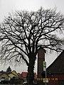 Imbshausen, 37154 Northeim, Germany - panoramio (17).jpg