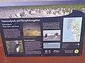 Information über Wattenmeer in Wyk auf Föhr-4.jpg