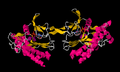 Inositol-Trisphosphate 3-Kinase B (Isoform B).png