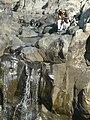 Iriswaterfall4806.JPG