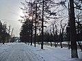 Irkutsk. Akademgorodok. February 2013 - panoramio (167).jpg