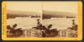 Islands in the Columbia, from the Upper Cascades, by Watkins, Carleton E., 1829-1916.png