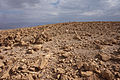 Israel - stones on desert.jpg