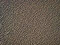 It looks like elephant skin but it's sand^ - geograph.org.uk - 709697.jpg