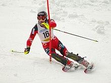 olympische winterspiele 2019 wikipedia