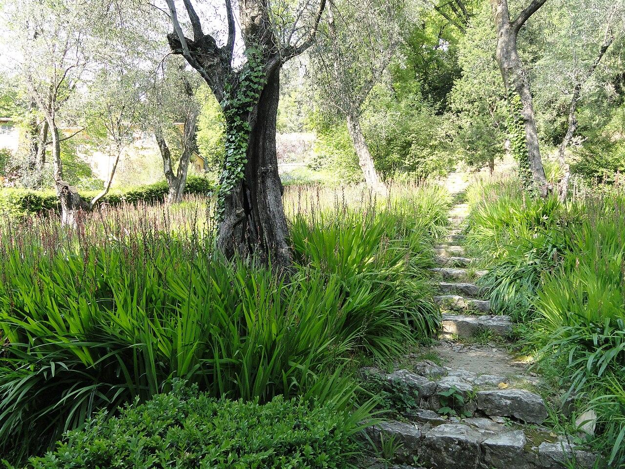 File jardin serre de la madone dsc04121 jpg wikimedia commons - Serre de jardin 12m2 ...