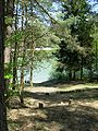 Jezioro Okoniec.jpg