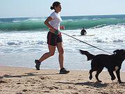 Jogging with dog at Carcavelos Beach