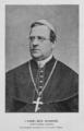 Karel Boromejsky Schwarz 1891 Eckert.png