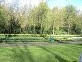 Keukenhof 2012 - panoramio (135).jpg