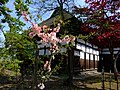 Kido Gorobe Village (木戸五郎兵衛村) - panoramio.jpg