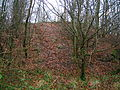 Kilwinning's Druid's Grove.JPG