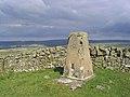 Kirk Hill triangulation pillar - geograph.org.uk - 521973.jpg