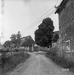 Križ pri Sežani, ulica s pilom 1969.jpg