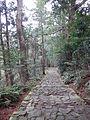 Kumano Kodo pilgrimage route Daimon-zaka World heritage 熊野古道 大門坂48.JPG