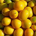 Kumquats FR 2013.jpg