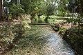L2020682 המים הזורמים בלב קיבוץ דן.jpg