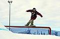 LG Snowboard FIS World Cup (5435329477).jpg