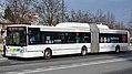 LPP Irisbus Citelis 18m.jpg