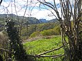 La Mota de Cetin , desde Granda de Arriba , Parres- Asturias. - panoramio.jpg