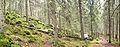 Laajavuori nature trail4.jpg