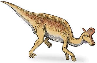 1923 in paleontology - Lambeosaurus