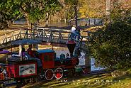 Landa Park train & walk bridge.