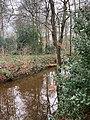 Landgoed Dickninge Drenthe Netherlands January 2021 18 44 03 885000.jpeg