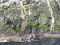 Landing on Boreray - geograph.org.uk - 1438712.jpg