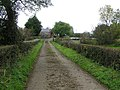 Lane, Boltnaconnell - geograph.org.uk - 1536086.jpg