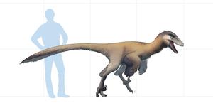 Latenivenatrix - Life restoration with human to scale