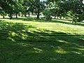 Lawn maze P6230336.jpg