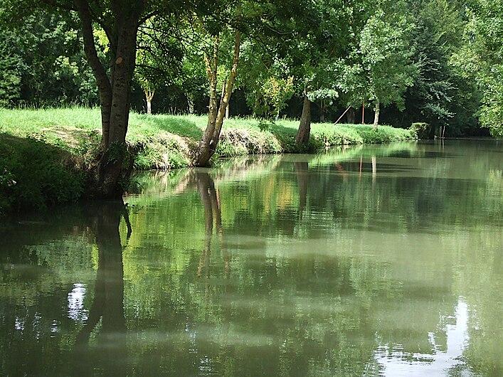 Le marais poitevin à La Garette.jpg