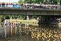 Leichlingen - Entenrennen 2010 - Rennen 15 ies.jpg
