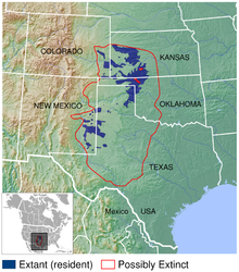 map of lesser prairie chicken distribution in south central United States