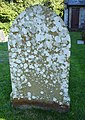 Lichen covered gravestone - geograph.org.uk - 552155.jpg