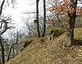 LigerzSchernelz FestiCastleRuins SouthWesternCornerFromEast RomanDeckert07032021.jpg