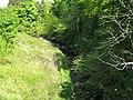Light and shade on the Brox Burn at Uphall - geograph.org.uk - 1303186.jpg
