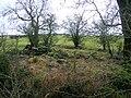 Lochend, Lambroughton Loch.JPG