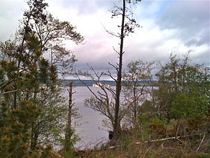 St Patrick's Purgatory - View of Station Island from the shore of Lough Derg, County Donegal, Ireland.